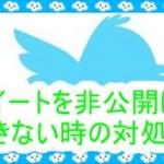 [Twitterの不具合]ツイートを非公開にできない時の対処法